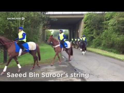 Behind the scenes with Saeed Bin Suroor