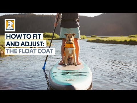 How To Fit And Adjust The Ruffwear Float Coat