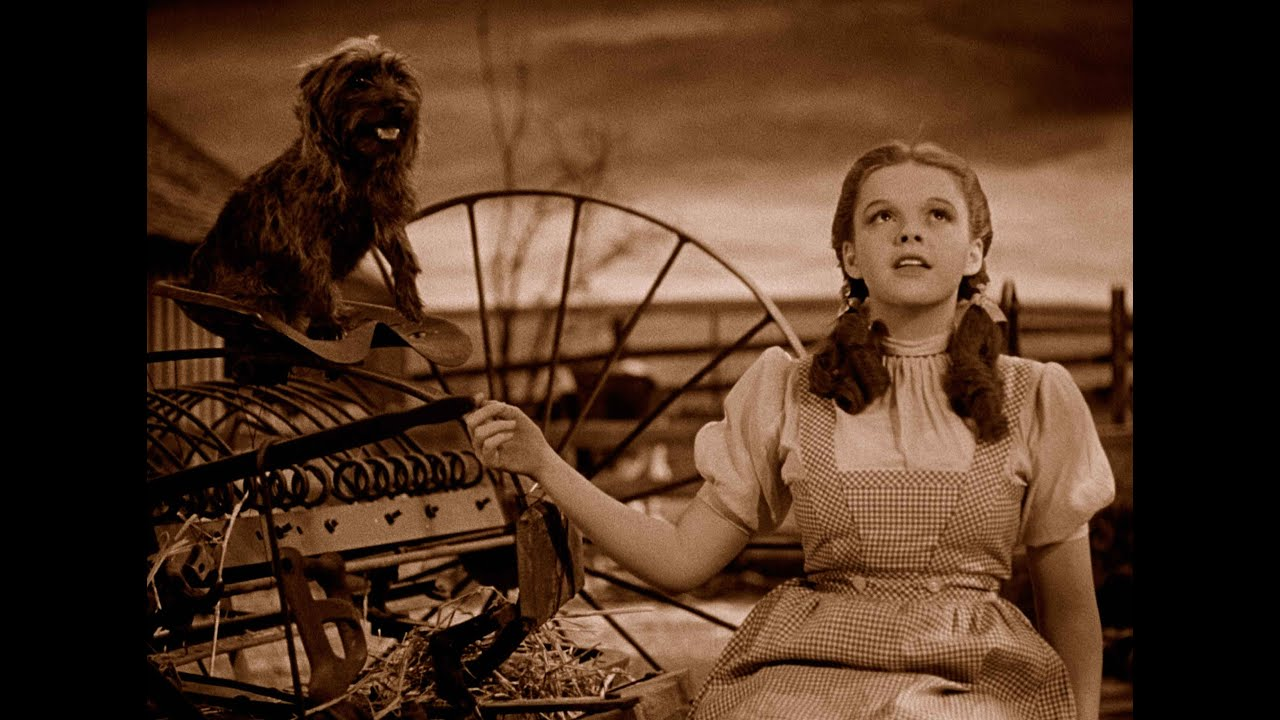 Image result for Over the Rainbow, The Wizard of Oz