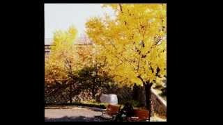 MY MEMORY of WINTER SONATA (English Version)