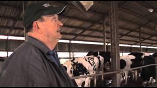 Petty Dairy Farms (Ga. Farm Monitor Feature)