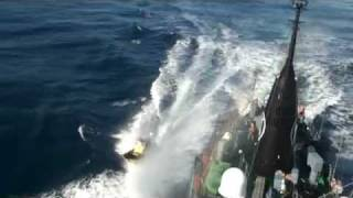Steve Irwin activists throw butyric acid-containing glass projectiles toward the Yushin Maru No.3