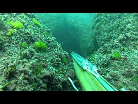 Подводная охота в Чёрном море