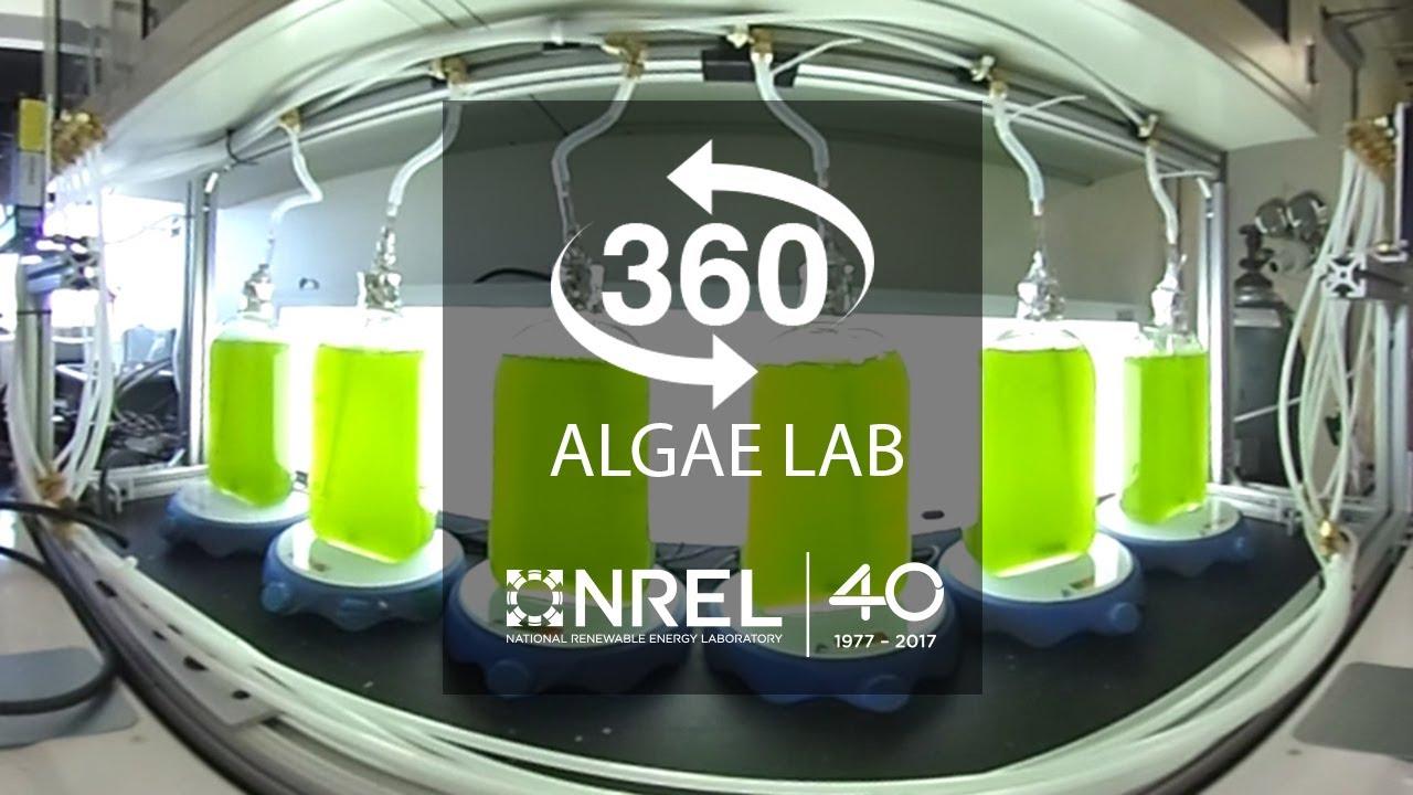 Take a 360-Degree Tour of NREL's Algal Biofuels Research Facility