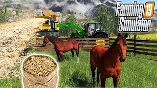 КАК СОДЕРЖАТЬ ЛОШАДЕЙ? FARMING SIMULATOR 19