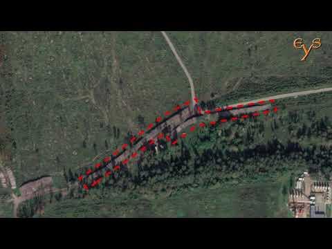 Следы крупной вырубки леса в Лосином острове