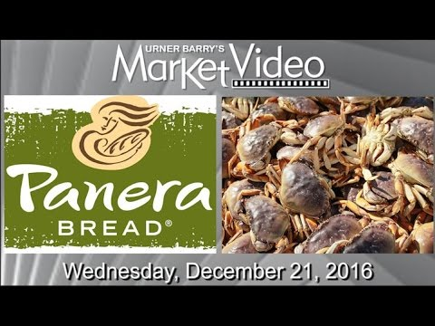 Panera Bread to Improve Animal Welfare; Record Markets for Turkey; China Bans Dungeness Crab