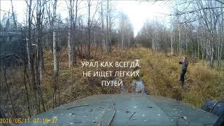 Урал-4320 или Зил-131. Какая из машин проходимее? Видео от первого лица.