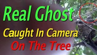 Real ghostl or angel caught on Camera flying in tree!! Scary Ghost seen in a busy way!!
