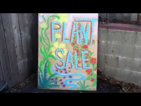 Making money growing and selling plants from home!