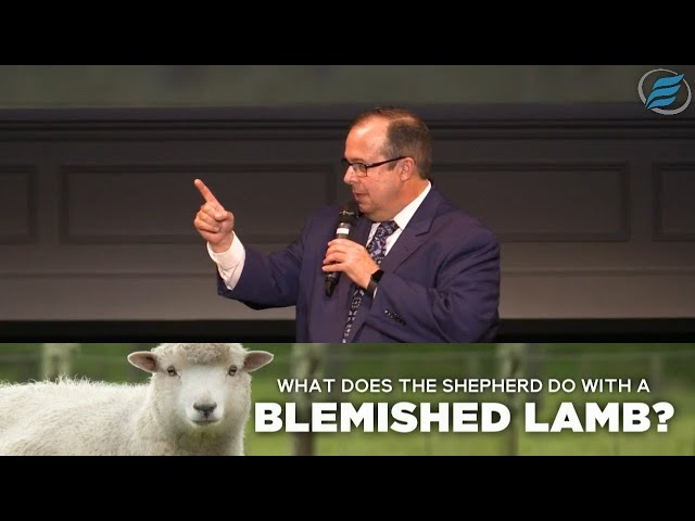 08/30/2020  |  What Does the Shepherd Do with a Blemished Lamb?  |  Rev. Scott Graham