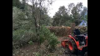 Kubota B1820 Working in the Forest