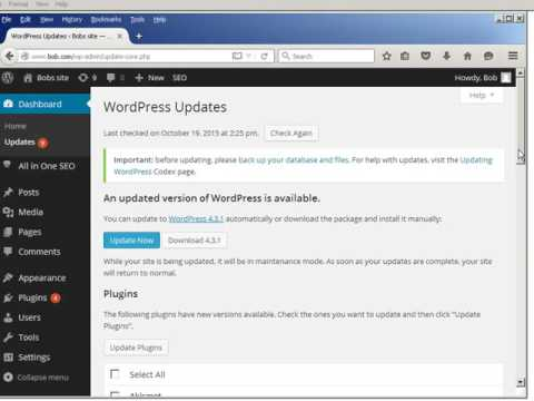 How to Update a WordPress Website or blog