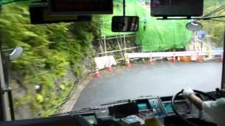 Japanese bus driver