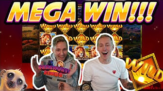 MEGA WIN! Serengeti Kings Big win - HUGE WIN on Bonus Buy