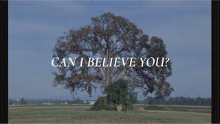 Fleet Foxes - Can I Believe You? Lyrics // Subtitulos Español