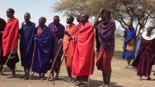 TANZANIE   Tribu Massai