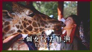 [中字] ????我的長頸鹿初吻????|一個女仔去非洲 EP 7|KENYA VLOG|RedisPolly