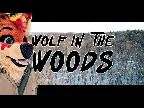 Kero Shorts: Wolf in the Woods