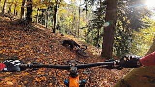 This trail is too steep for amateurs! | MTB