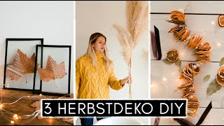 3 DIY Herbstdeko Ideen - getrocknete Orangen, bemalte Blätter und ein etwas anderer Herbstkranz