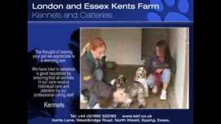 Leaving Pet At Boarding Kennels - Making The Right Choice...