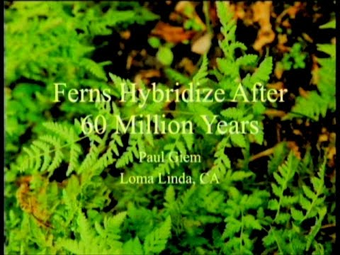 Ferns Hybridize After 60 Million Years 6-6-2015 by Paul Giem