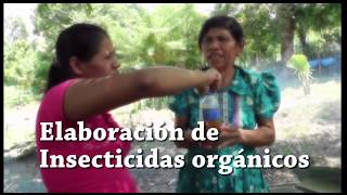 Fortalecimiento a la Gobernanza Territorial - PPD GUATEMALA
