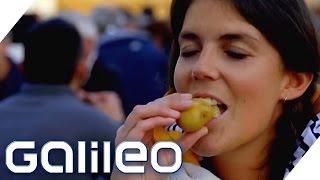 Die teuerste Kartoffel der Welt | Galileo | ProSieben