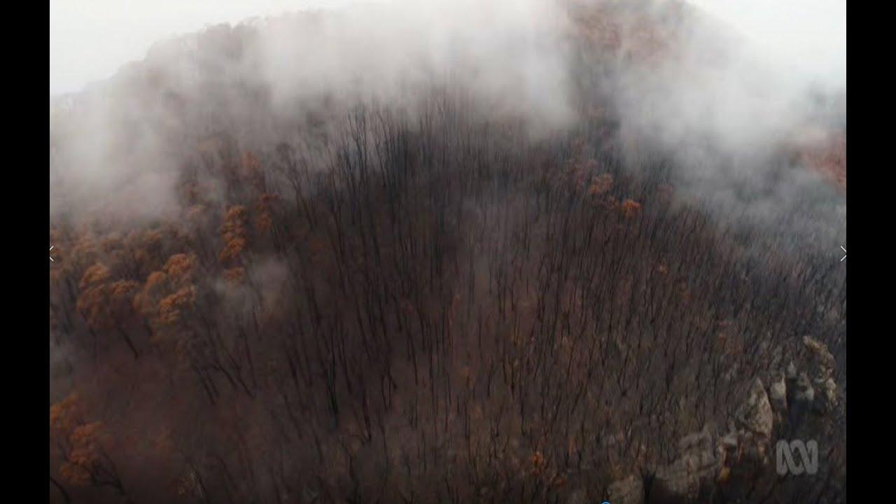 Australian Bushfires 2019/20