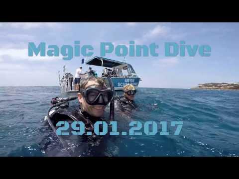 Scuba Diving Magic Point, Sydney - 29.01.17