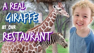 A Real Giraffe at our Restaurant! Dining at Boma in Animal Kingdom