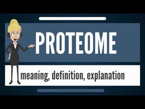 What is PROTEOME? What does PROTEOME mean? PROTEOME meaning, definition & explanation