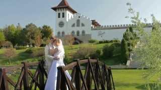 Свадебный клип Владимир и Юля
