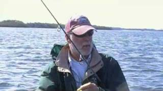 doa lures grassflat trout 5