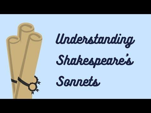 Understanding Shakespeare's sonnets