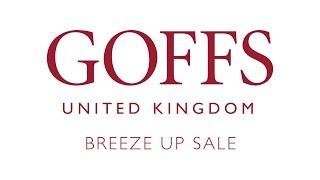 Goffs Breeze Up Sale 2019