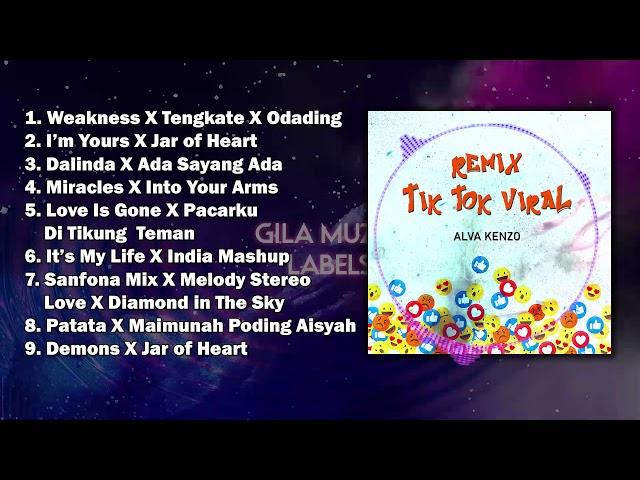 Remix Tik Tok Viral | Alva Kenzo | Dalinda Sanfona Mix Patata Odading