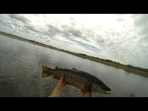 Buzzer Fishing Lough Corrib - Two 6lb Fish