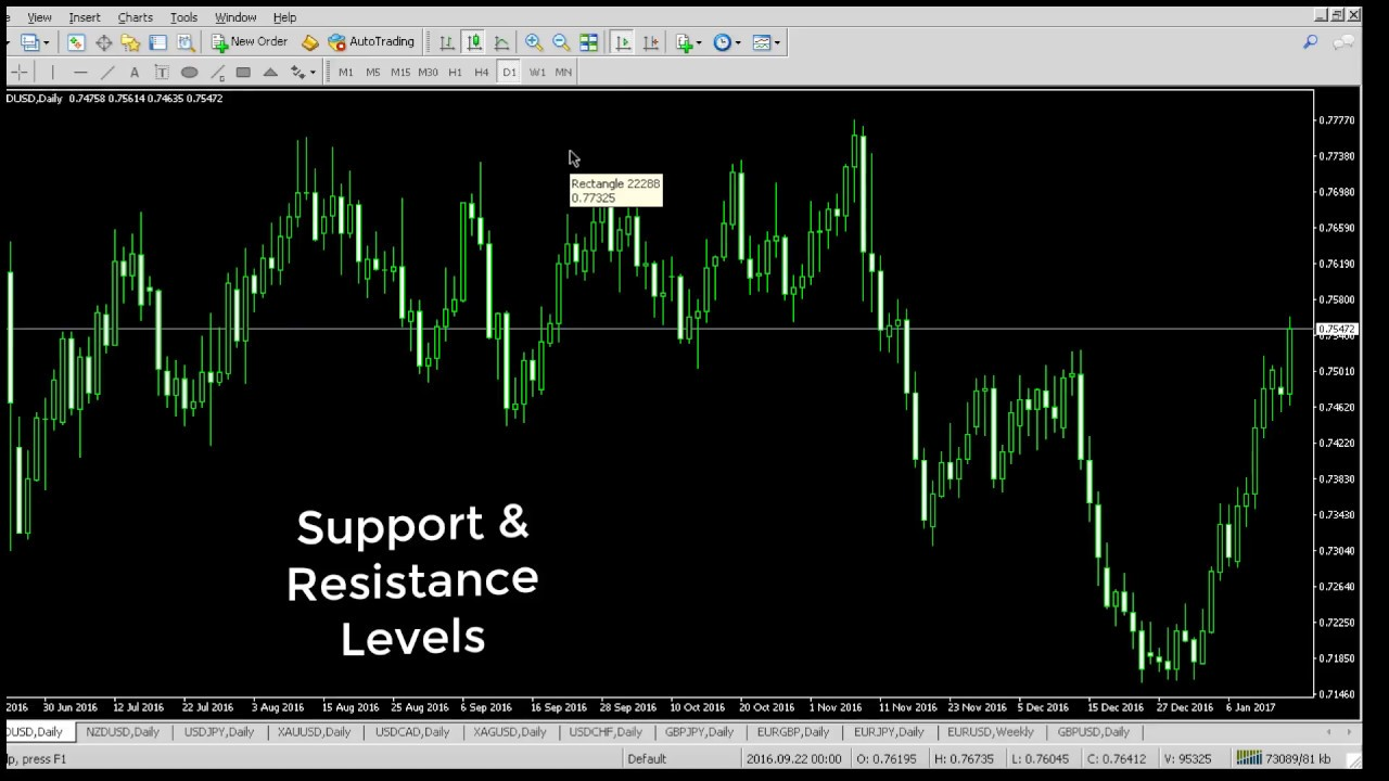 Forex Commodities And Stocks Trading Training In Dubai Trade In Peace -