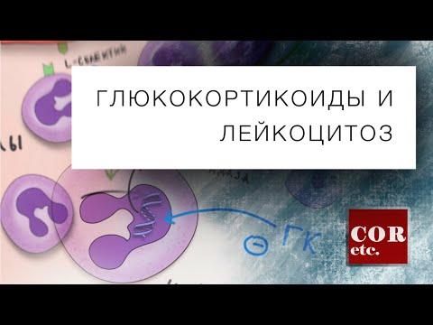 Видео Глюкокортикостероиды что это такое простыми словами