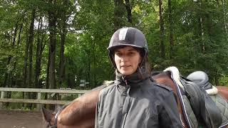 Почему лошадь не поворачивает. Ошибки начинающих всадников.