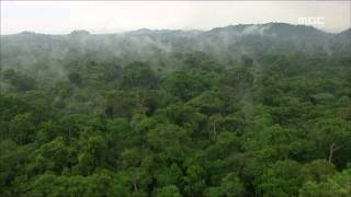 Tears of the Amazon, EP05, #05, 아마존의 눈물, 5회 20100205