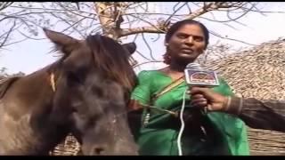 ANGANWADI TEACHER TRAVEL WITH HORSE ZINDAGI