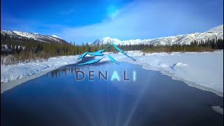 Denali Company Overview - Exceptional IT, Delivered.