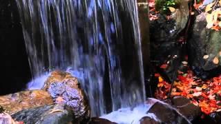 Минеральный источник(Восполнить недостаток йода, калия, кальция и других микроэлементов в организме человека возможно водой..., 2015-11-21T16:26:50.000Z)