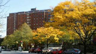 125th Street & Broadway My Old Stomping Ground General Grant Projects Harlem New York City part 1