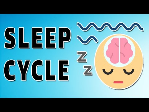 Physiology of Sleep (Cycles and Waves)