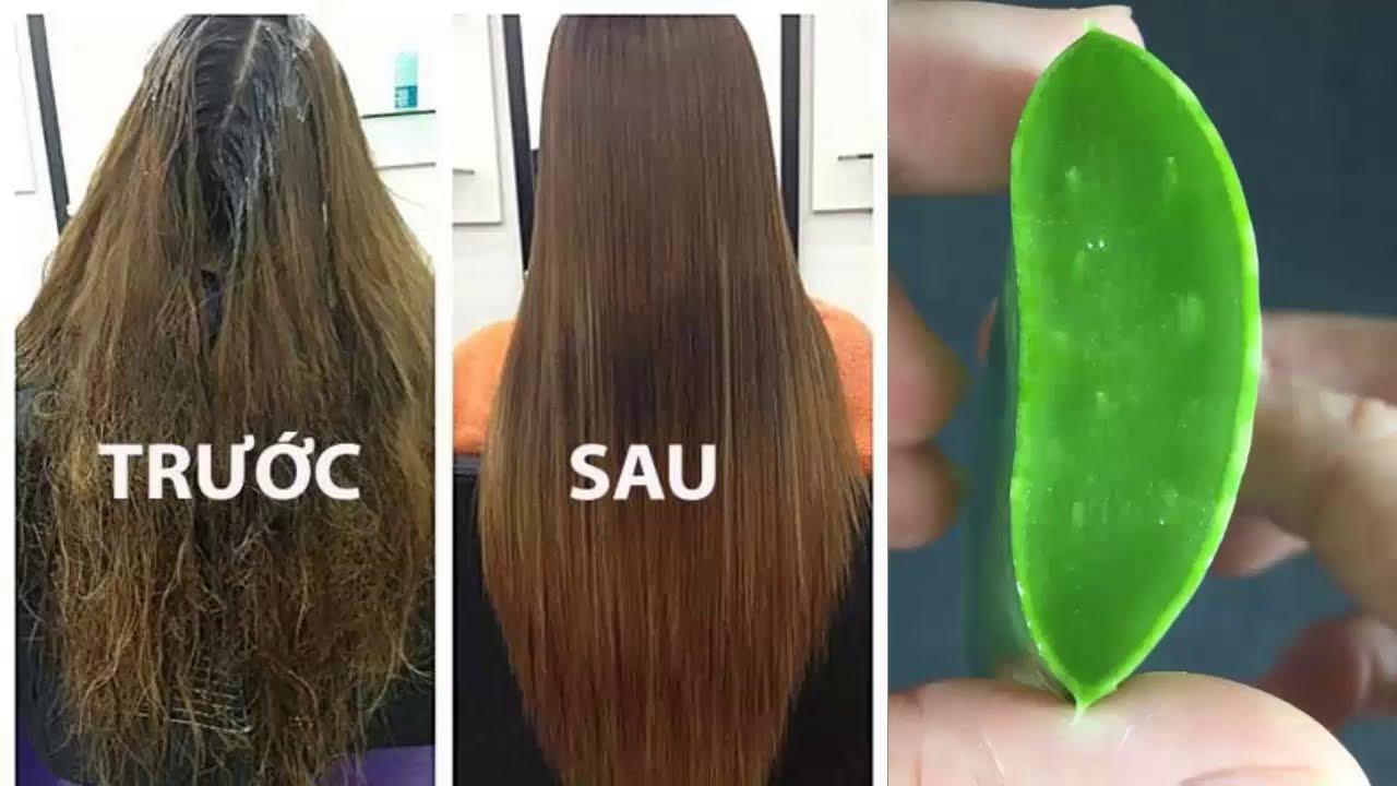 Mẹo hay giúp phục hồi mái tóc hư tổn, khô xơ, chẻ ngọn trở nên óng mượt, chắc khỏe ngay tại nhà