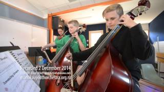 2014 MYO Hillpark School Basses & Viola